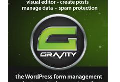 gravityform1