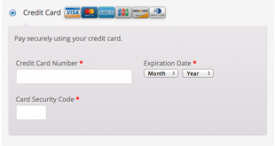 woocommerce-gateway-firstdata-payment-form-550x309