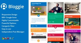 Bloggie-Responsive-Multipurpose-Post-Type